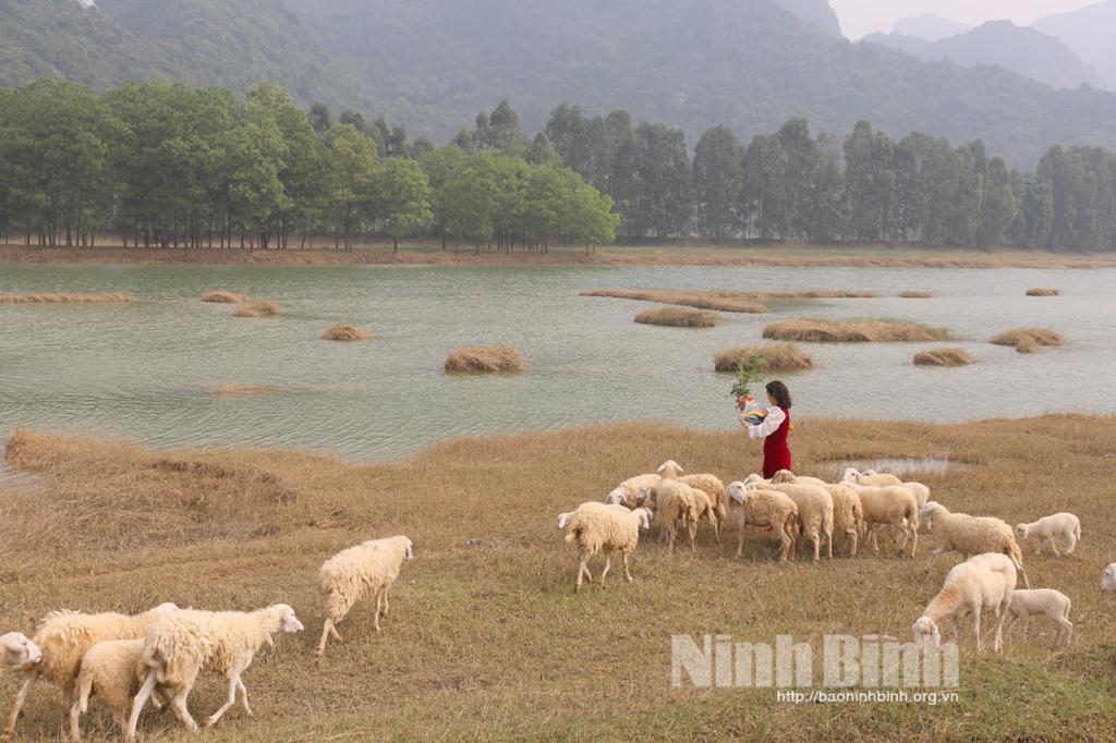 Thêm điểm Check in độc đáo cho giới trẻ Ninh Bình