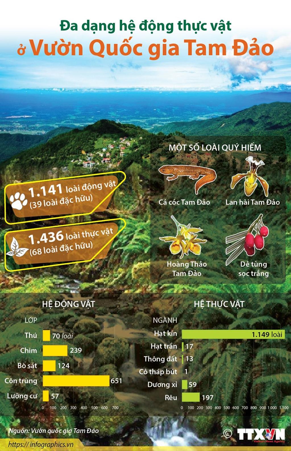 Infographics Đa dạng hệ động thực vật ở Vườn Quốc gia Tam Đảo