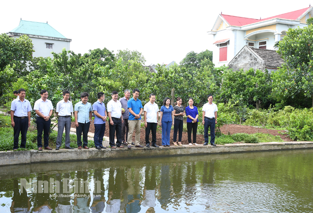 Kiểm tra xây dựng nông thôn mới tại huyện Yên Khánh