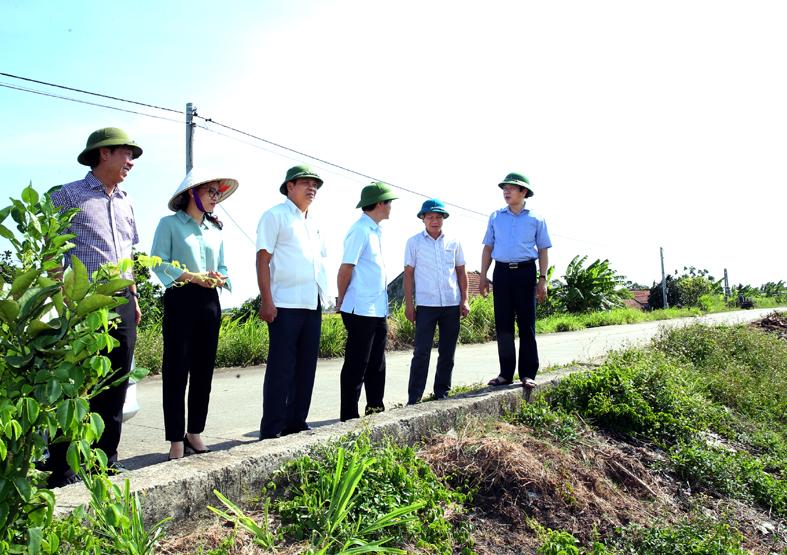 Đồng chí Phó Chủ tịch UBND tỉnh kiểm tra công tác phòng chống thiên tai tại Kim Sơn