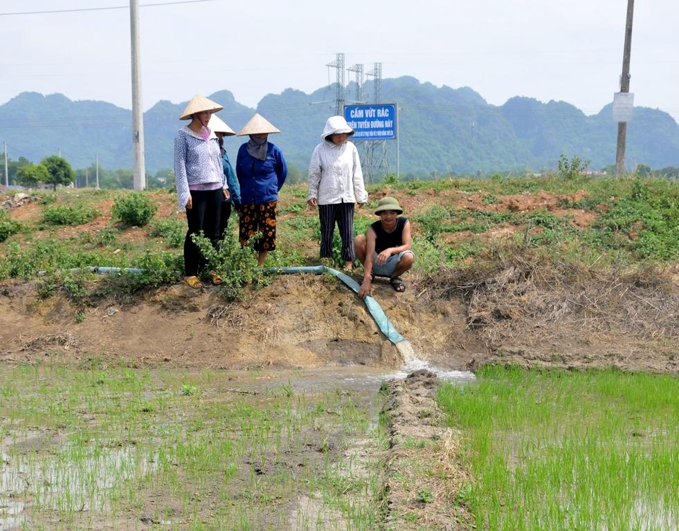 Thạch Bình: Nguy cơ mất mùa cao do hạn hán