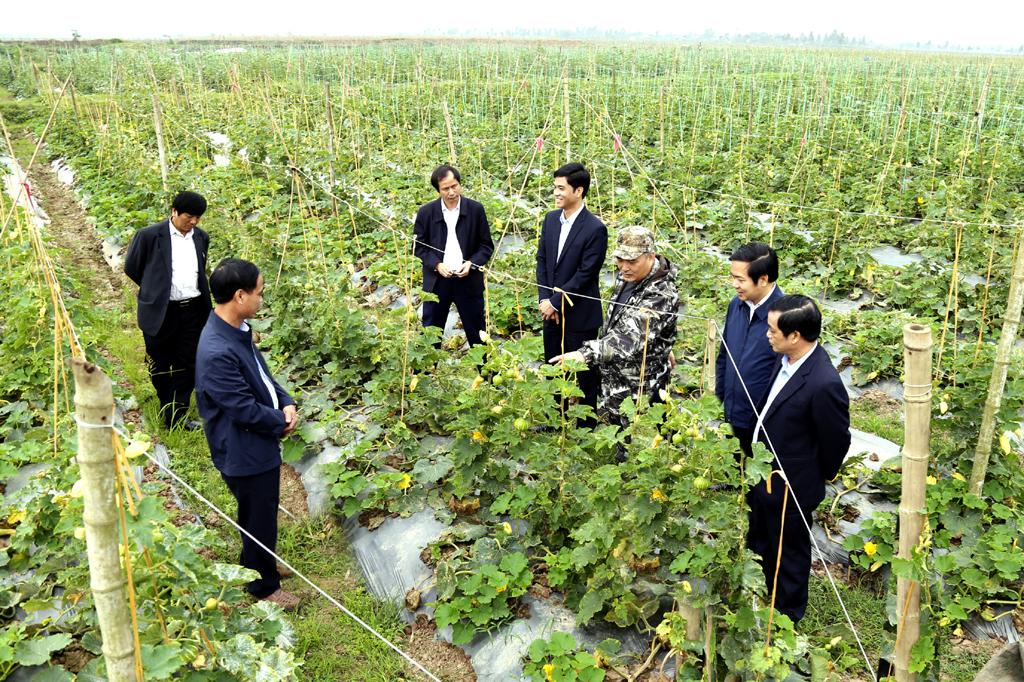 Thực hiện có hiệu quả tái cơ cấu nông nghiệp gắn với xây dựng nông thôn mới