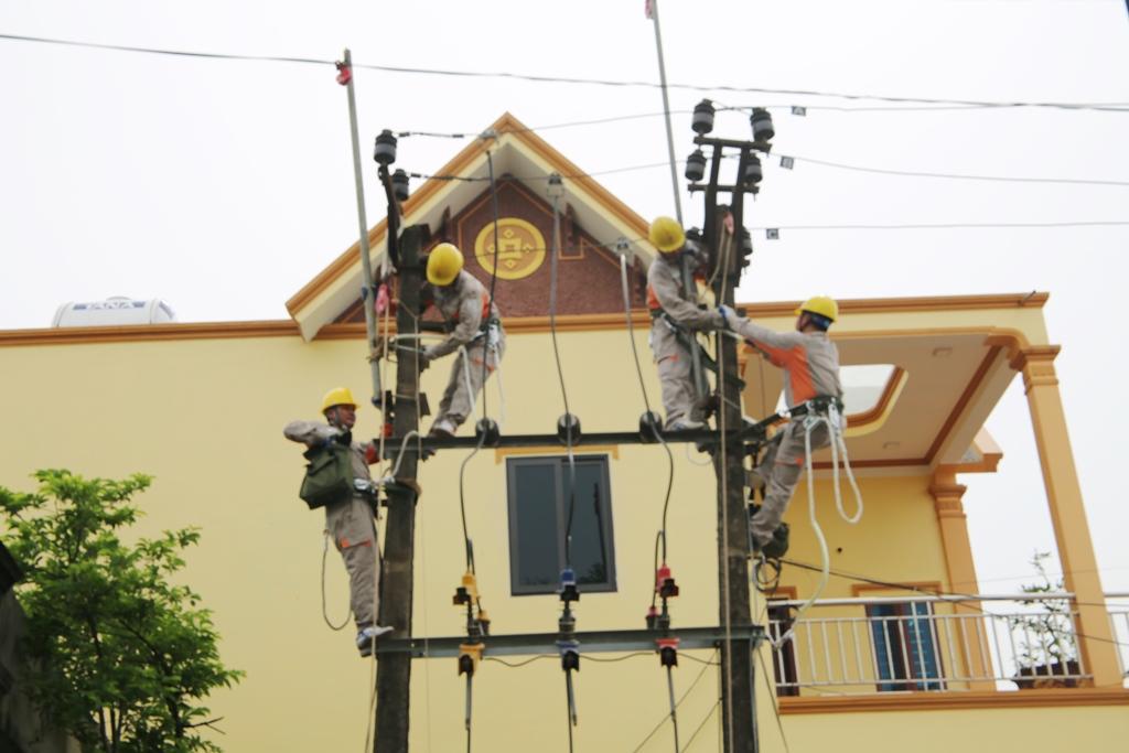 Công ty Điện lực Ninh Bình, chủ động trong phòng, chống thiên tai