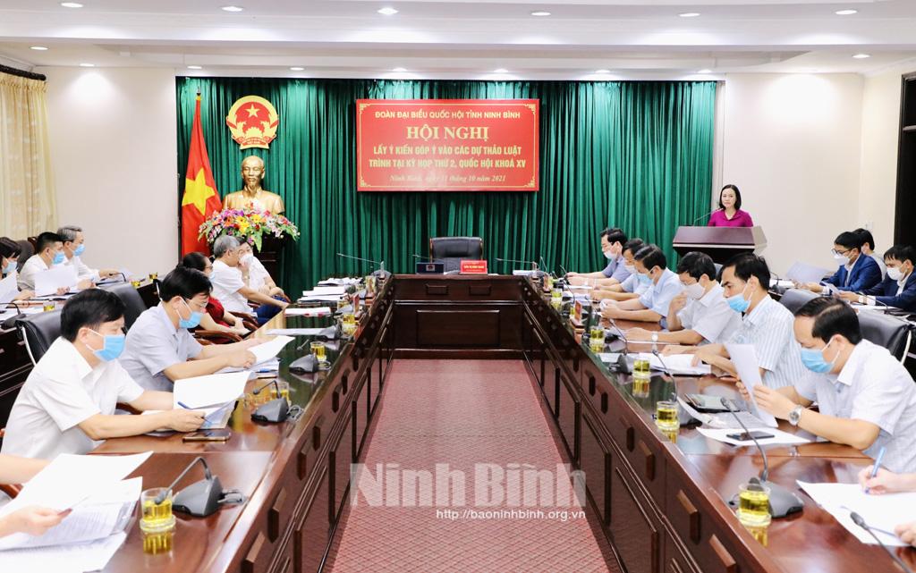 Đoàn ĐBQH tỉnh tổ chức lấy ý kiến góp ý vào các dự thảo luật trình tại Kỳ họp thứ 2, Quốc hội khóa XV