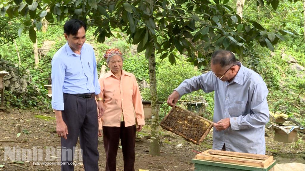 Tháng Ba, mùa ong đi lấy mật