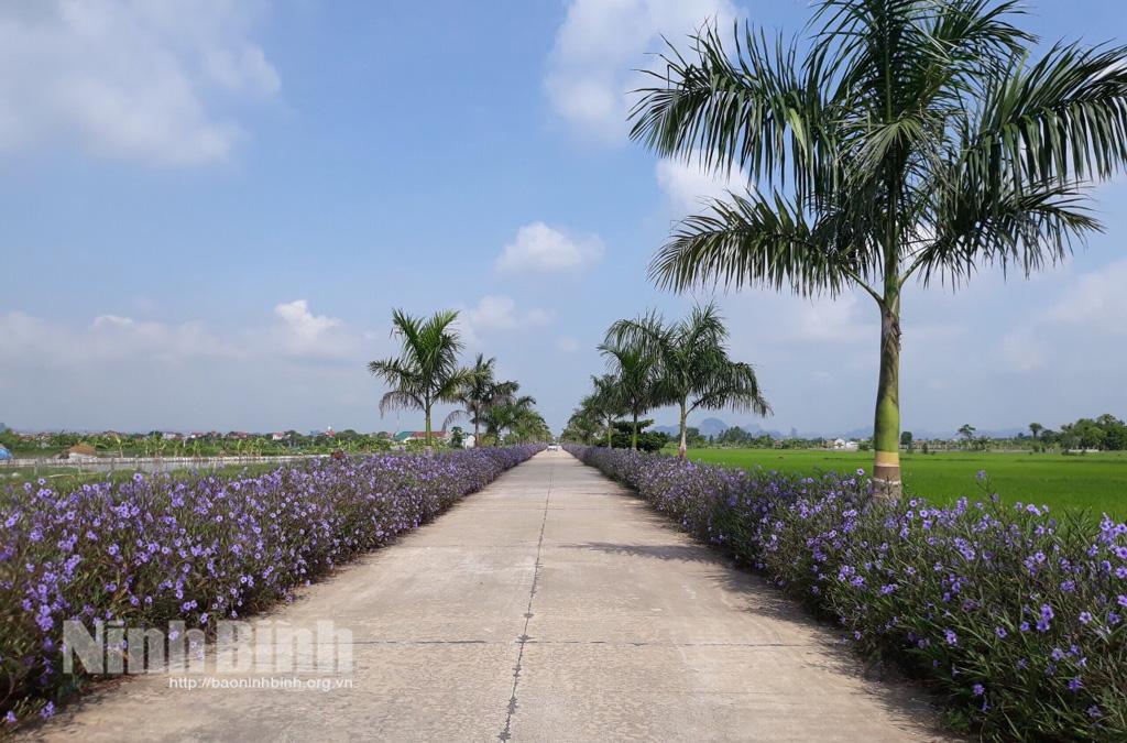 Huyện Yên Mô được công nhận đạt chuẩn nông thôn mới